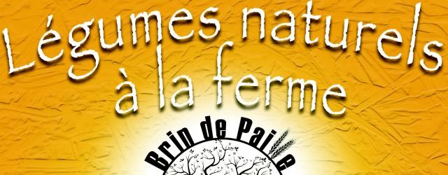 Les premiers paniers légumes de Maraichage Brin de Paille, maraîcher à Monétay sur Loire, sont arrivés aujourd'hui au Centre Social ! Vous souhaitez vous aussi en bénéficier ? Téléchargez la […]